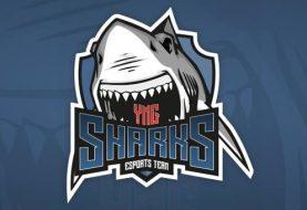 yng Sharks, a nova equipa de eSports nacional